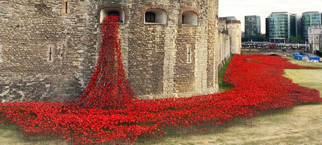 The significance of memorial flowers chasing dragonflies ceramic poppies installation first world war london tower mightylinksfo